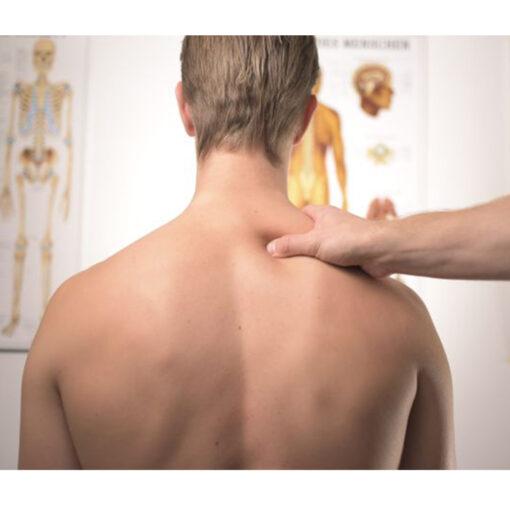 Muskel- und Gelenkschmiere
