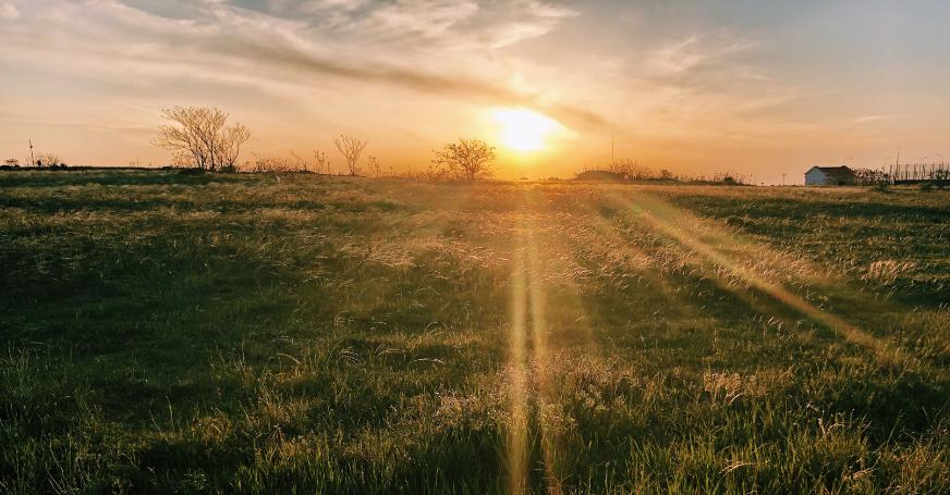 Sonne sorgt dafür, dass im Körper Vitamin D gebildet wird.
